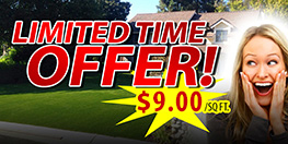Artificial Grass Discount Special Offer