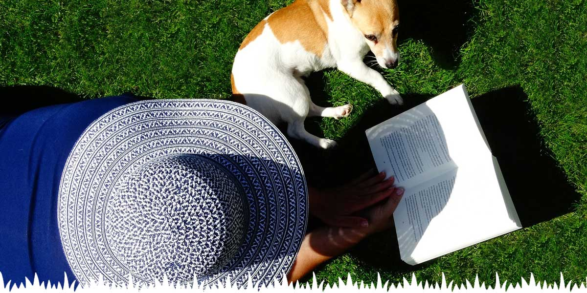 Artificial Grass Safe Family Pets