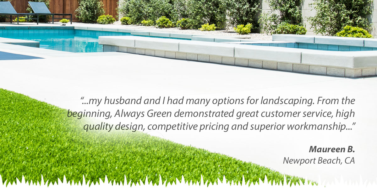 Artificial Grass Reviews