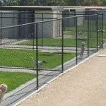 Dog Kennel Pet Turf