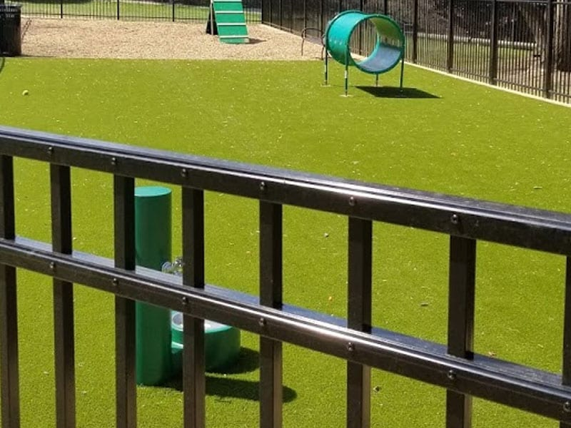 artificial grass dog park installer